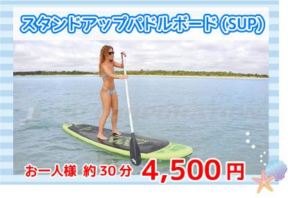 SUP4500円