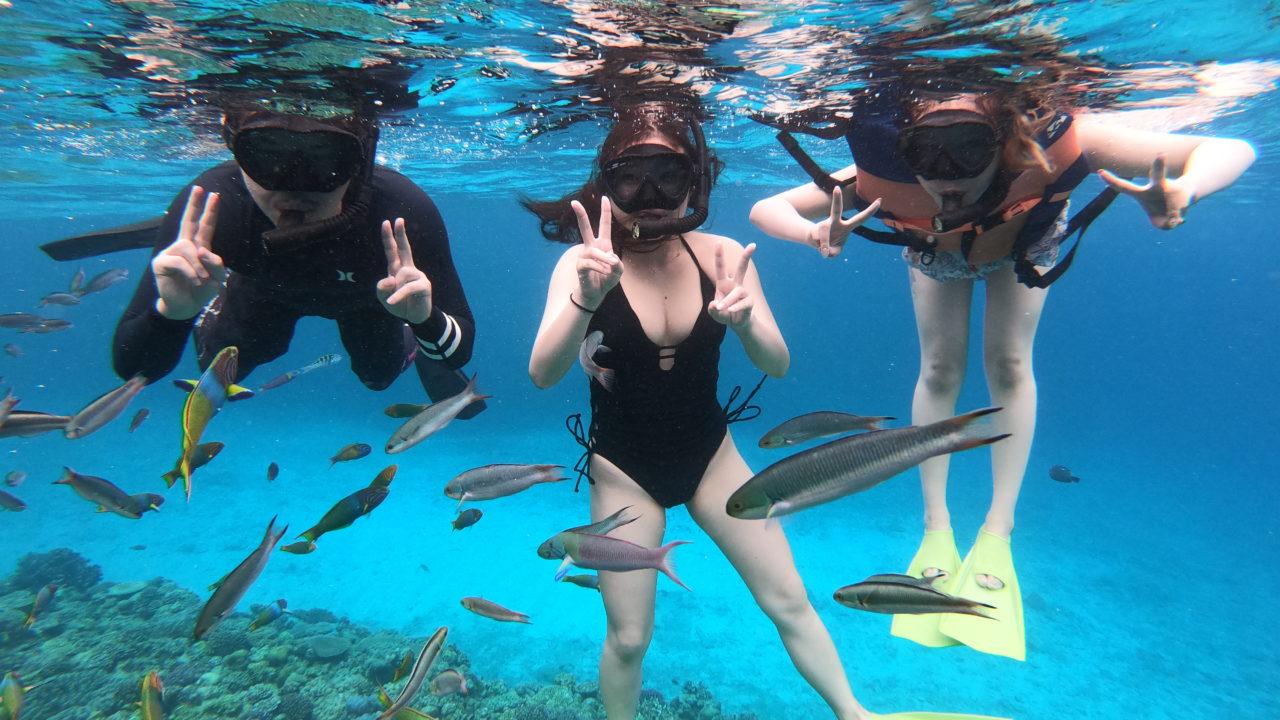 水納島で素潜りスキンダイビング体験|水納島や瀬底島マリンスポーツ専門店